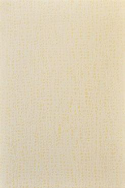 2004 Kp Africa Crema 25X37 1.3 I